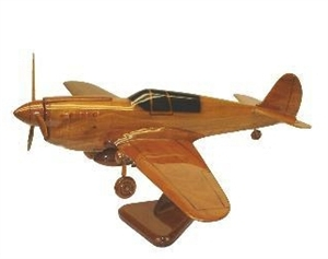 P-40 Warhawk airplane aircraft model